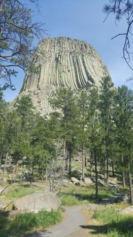 On my way home I stopped at Devil's Tower in Wyoming.