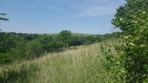 I went hiking in prairies in Kansas.