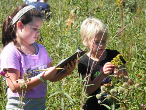 Young botanists hard at work
